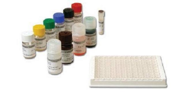 Kit ELISA cho ung thư